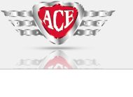 About Ace Auto Electrician